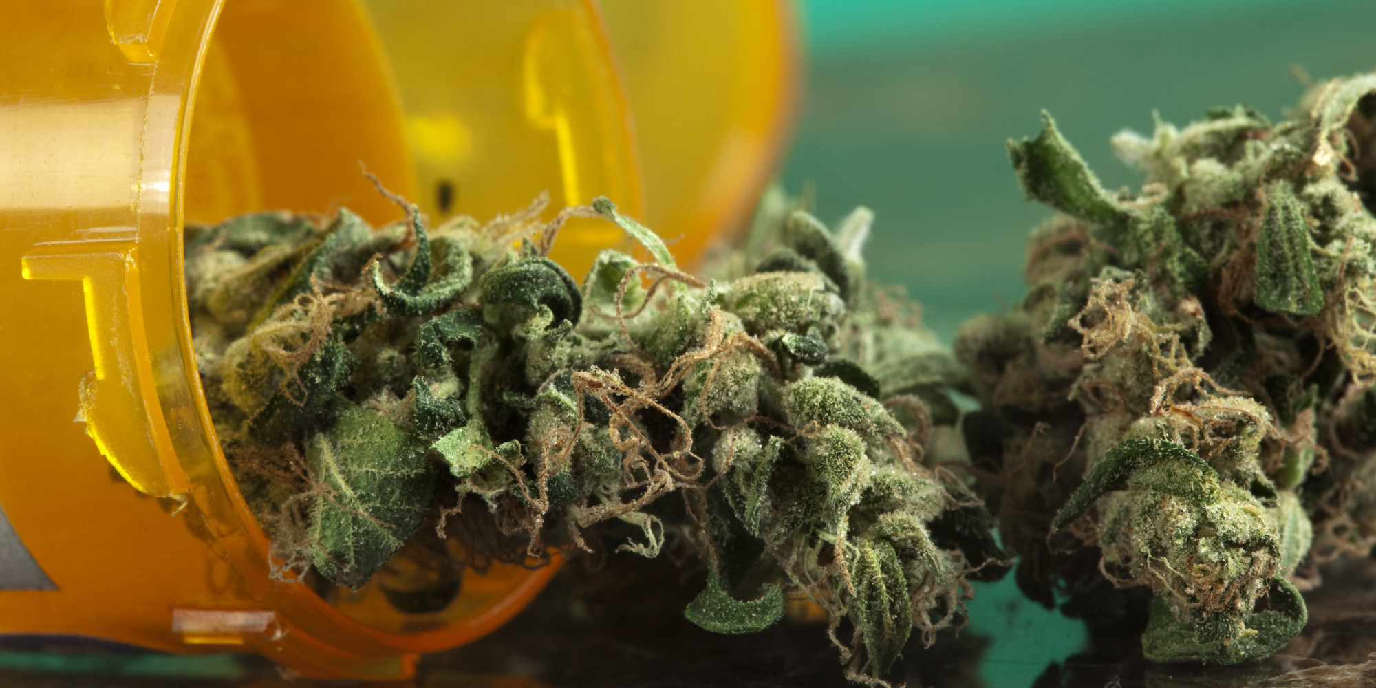 Arkansas Drug Policy Education Group Seeks to Expand List of MMJ Qualifying Medical Conditions