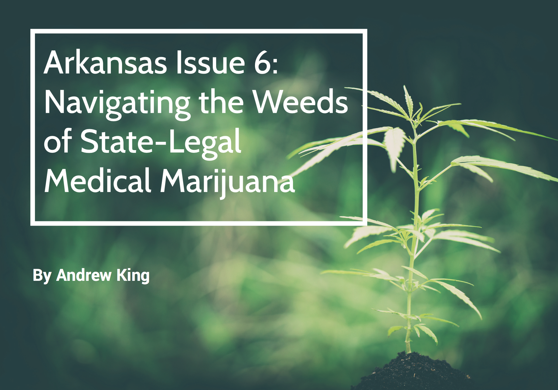 Arkansas Bar Association: Lawyers would violate Professional Conduct Rule by advising MMJ applicants